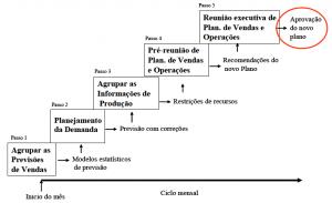 fig 9 processo